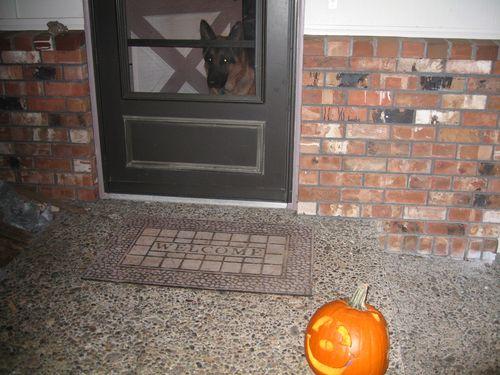 HalloweenPumpkin2011wGader 005