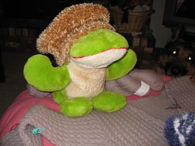 Chemocapvadersfrog2