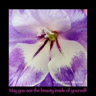 Beauty_inner