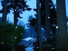 Snowincoosbayfromtheporch11107