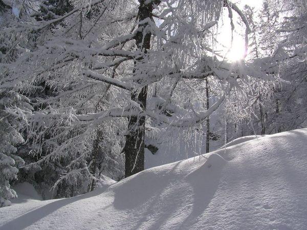Winterwonderlandscene4