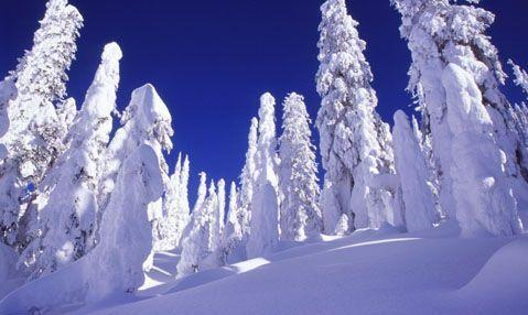 Winterwonderlandscene6_1