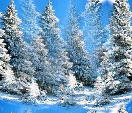 Winterwonderlandscene7_3